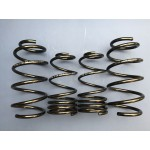 DAP Springs Road Spec - Corsa D VXR