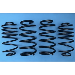 DAP Springs Road Spec - Astra H
