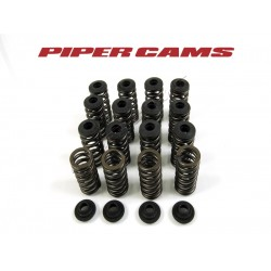 Single Valve Spring Kit To Suit Vauxhall Corsa VXR Z16LER. Z16LEx / A16LEx / B16LEx Engines