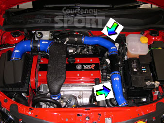 Intercooler to Plenum Hoses